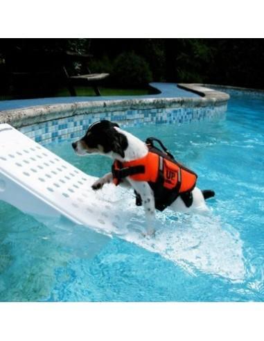 Rampe de piscine pour chien - blanc